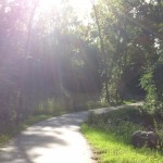 Sun beams peek through the trees on the park path to Wilmes Lake in Woodbury, MN.